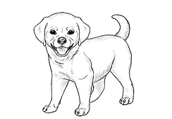 how-to-draw-puppy-preview.png