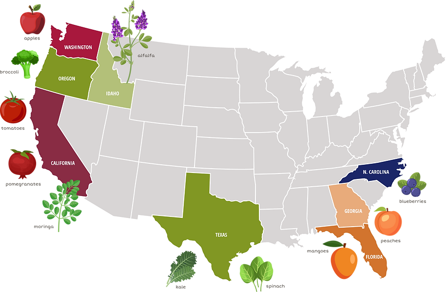 ProduceMap(1).png