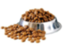 Dog-Dry-Food-Market-Research-Report-2019