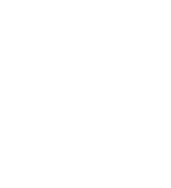 Wibes-Logo copy.png