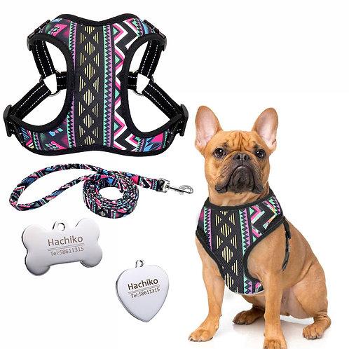 Set Lesă + Ham Purple Strips, Tip Vestă, Pentru Câini