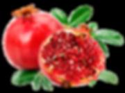 Pomegranite_72836229_web.png