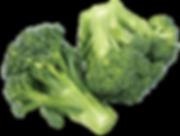 Broccoli_93392366_web.png