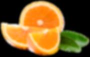 Orange_39484538_web.png