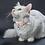 Thumbnail: Zgardă Sofi cu Fundiță Personalizată Pentru Pisici si Căței Mici
