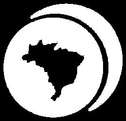 brasilinteligente2-09.png