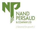 nand persaud.png
