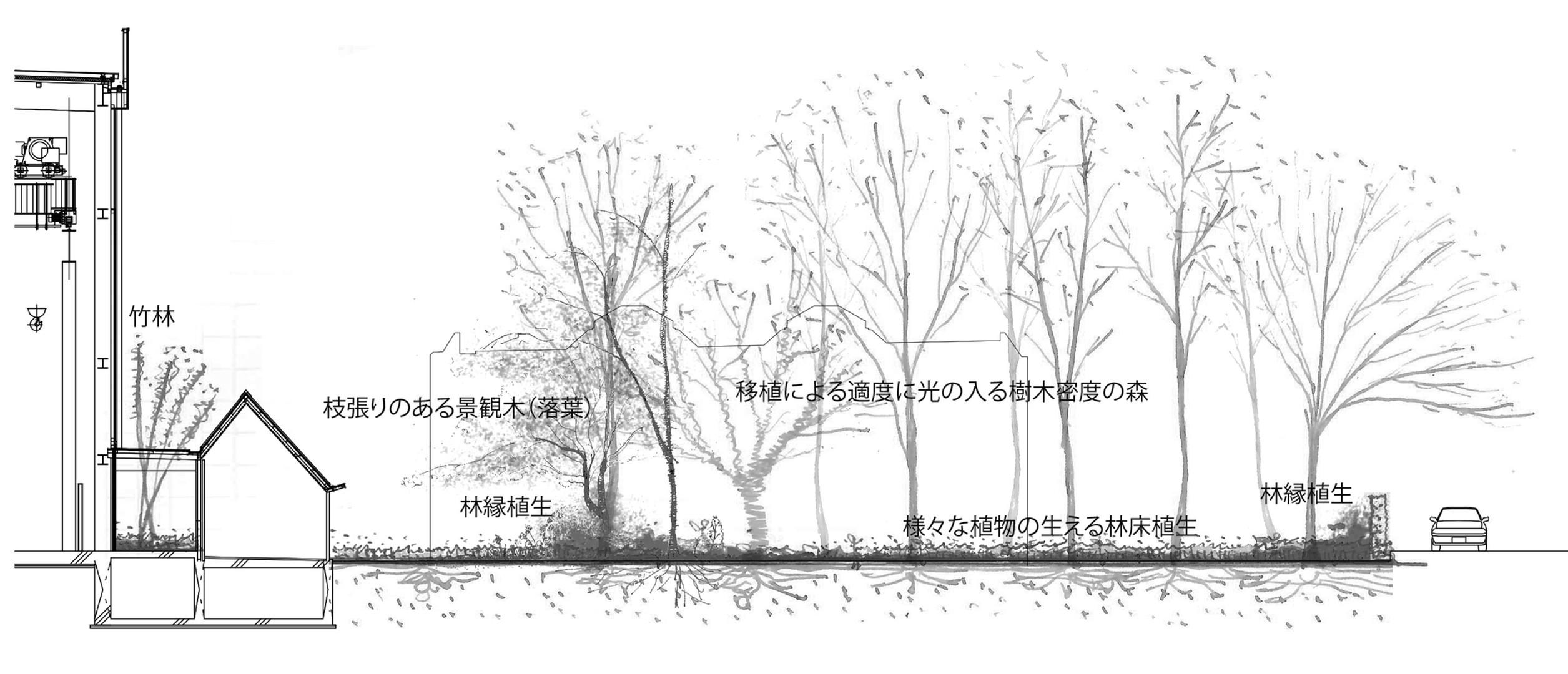 新工場前断面2メモ.jpg