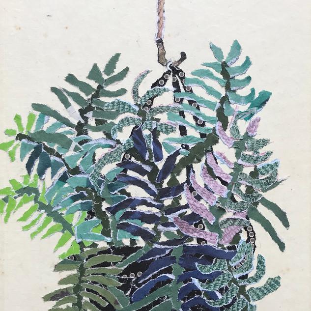 Plant life collage