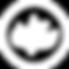 Calvary_Logo_White-300x300.png