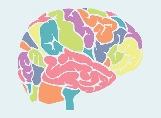 Traumatic Brain Injuries, Strokes, and Virtual Tours: #makemaypurple