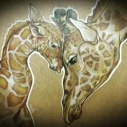 Maternidad Jirafas