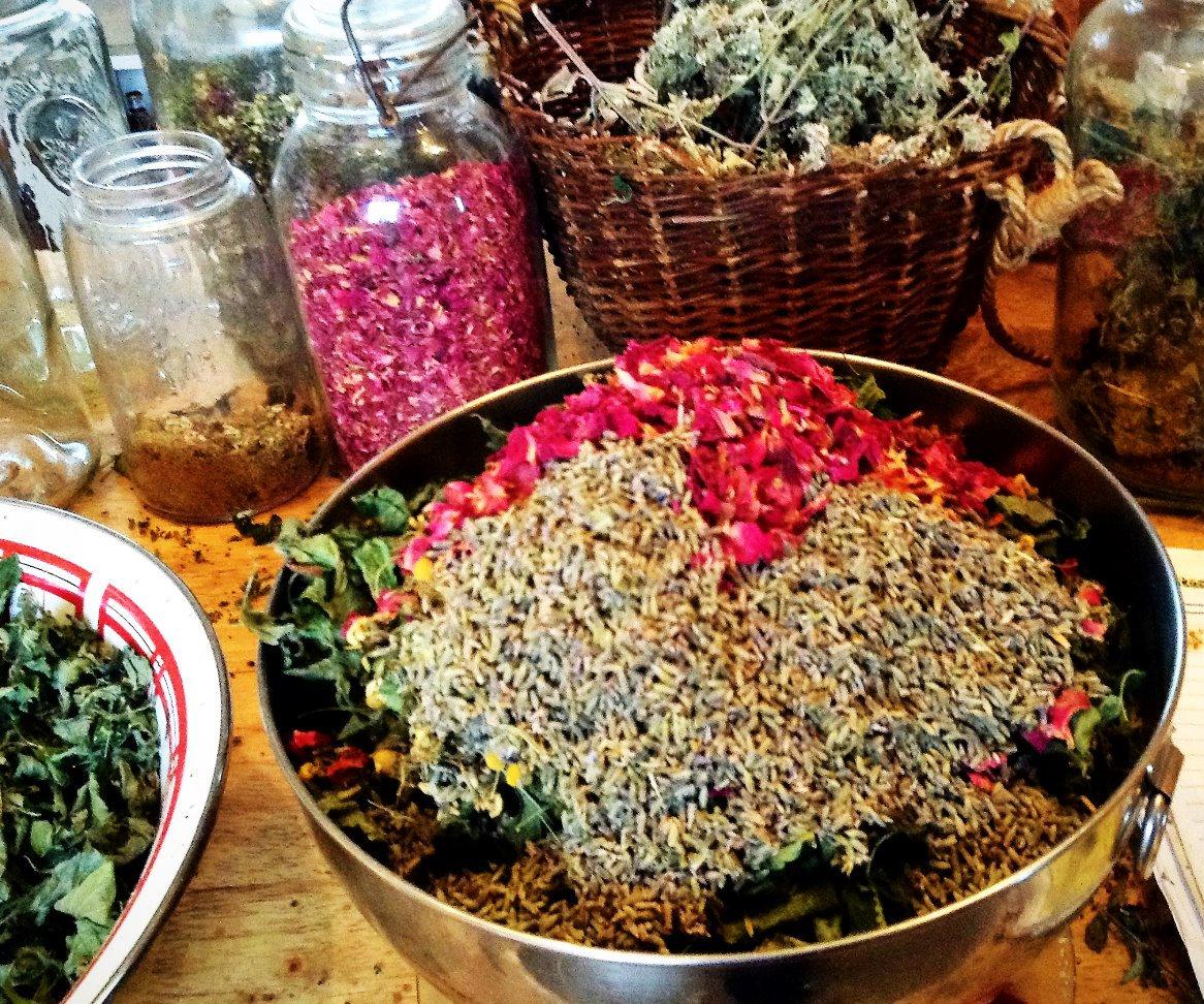 Lavender's Culinary & Medicinal Uses