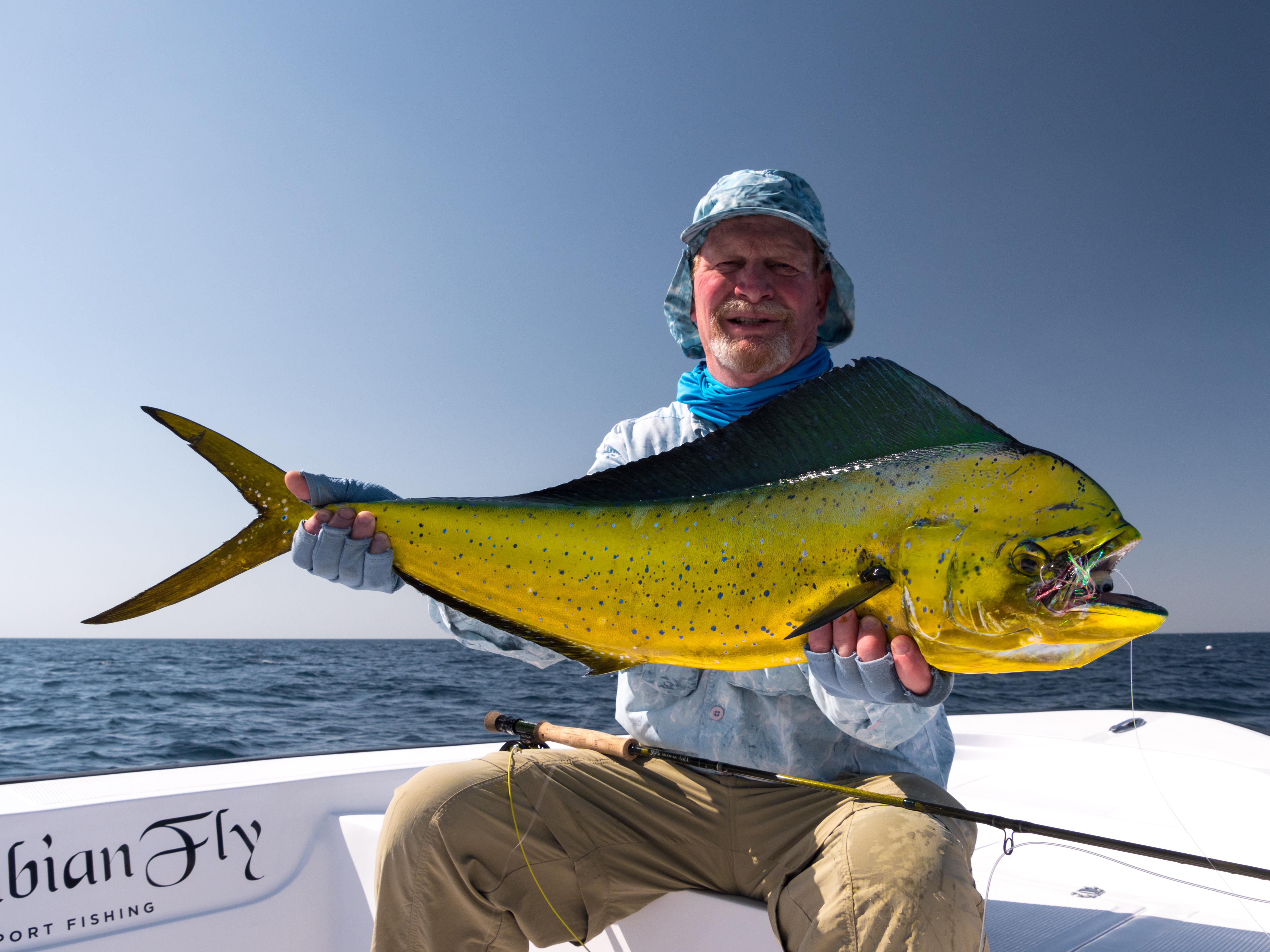 fishing Oman, Arabian Fly, dorado