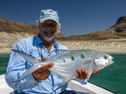 fishing Oman, Arabian Fly, pompano