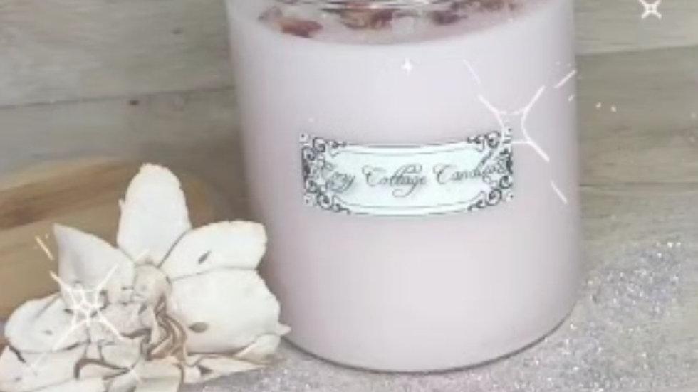 Vanilla Winter Rose