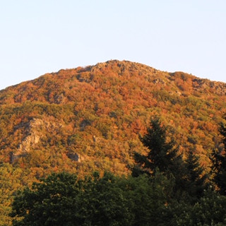 The view during autumn
