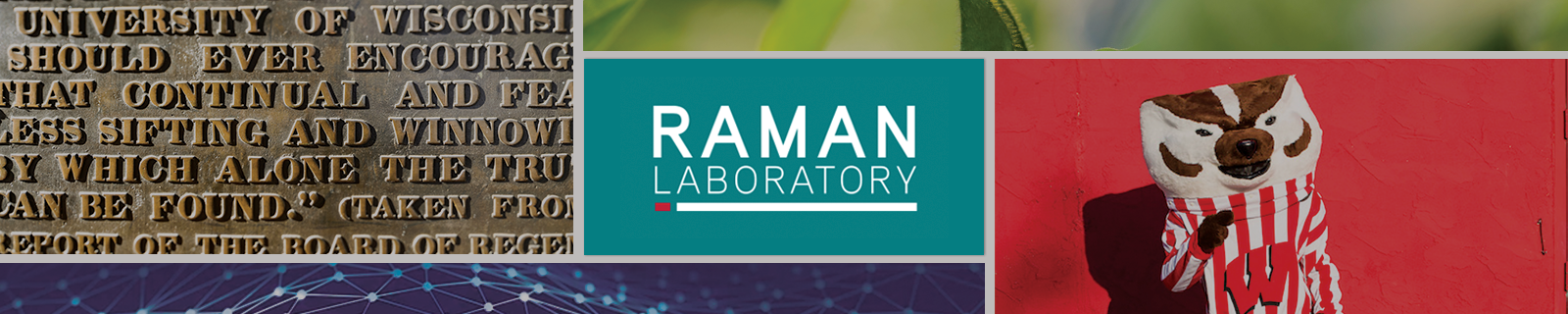 Raman Lab Hero image