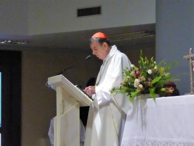 CG_2014_Messe_Kardinal Koch_2.JPG