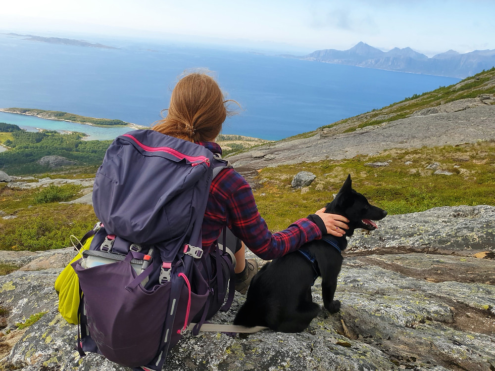 Kjerringøy | Ride the Bean | Northern Norway | Norwegian Black Elkhound | Hiking