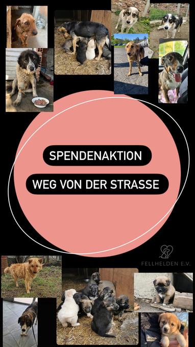 SPENDENAKTION >>>WEG VON DER STRAßE<<<