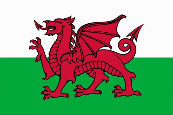A Dane in Wales