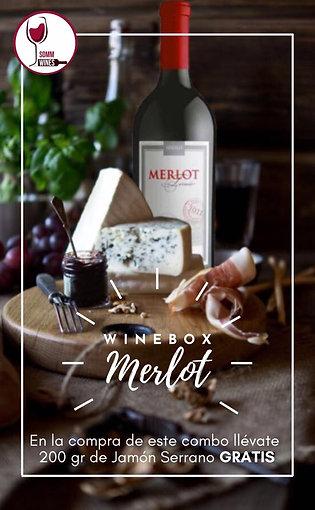Wine Box Merlot