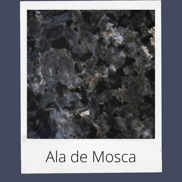 Ala de Mosca