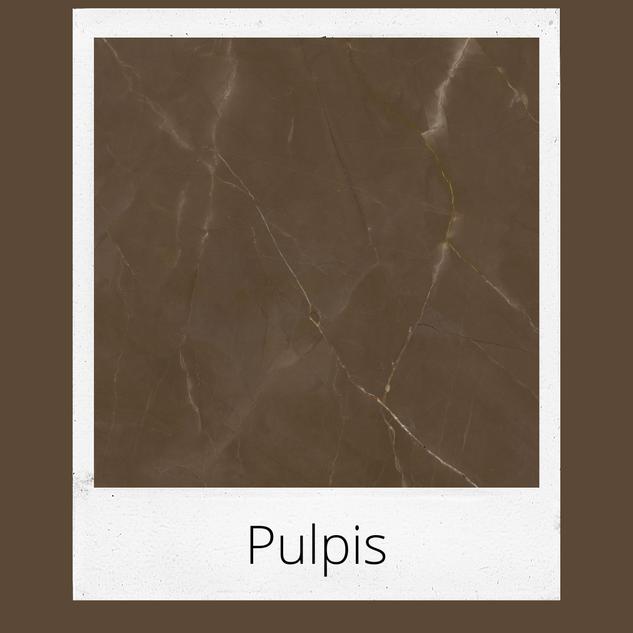 Pulpis