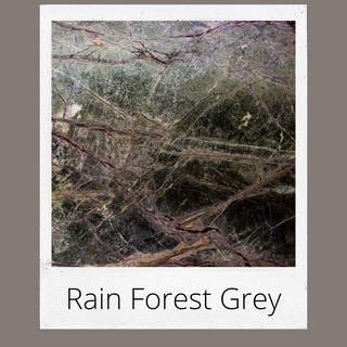 Rain Forest Grey
