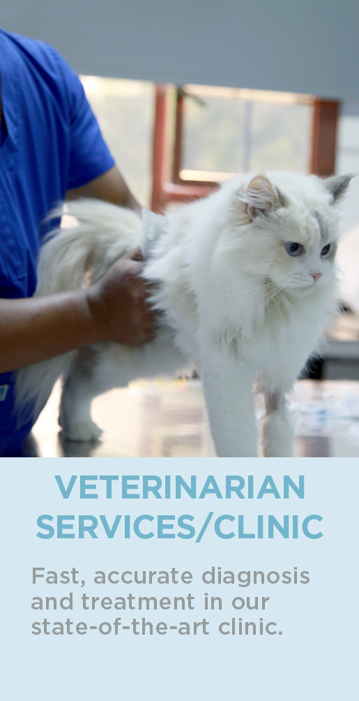 VETERINARIAN?SERVICES CLINIC