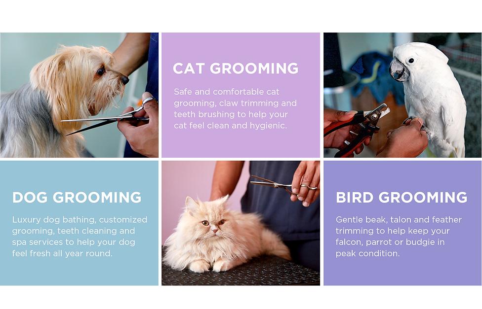grooming22.png