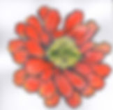 Collection Icons Orange Flower.jpg