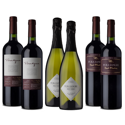 Caja mixta vinos emblemáticos de Domaine St Diego