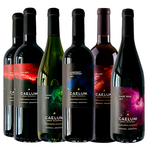 Caja Mixta Caelum Gran Reserva - 6 Botellas