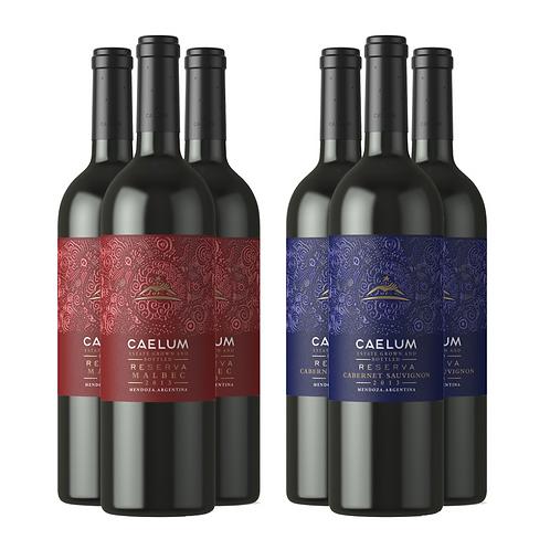 Caja Mixta Caelum Reserva - 6 Botellas