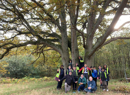 Norbury Primary School Pupils Complete '100 Tree Challenge'