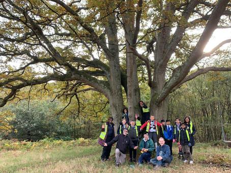 Norbury Primary School Pupils Complete '100 Tree Challenge'
