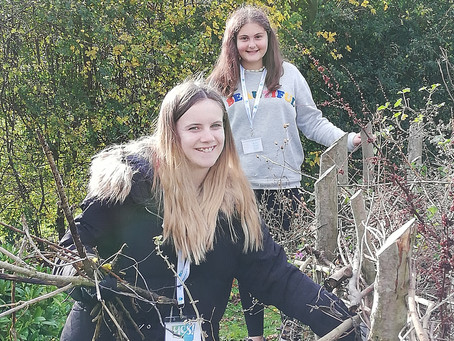 King Edmund Students Volunteer with Trust Links to Build 'Growing Together' Community Space.