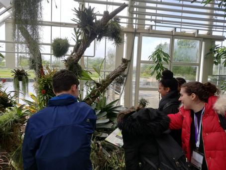 Chertsey High School visit Wisley Gardens