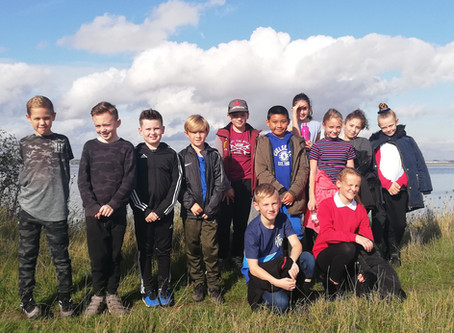 Miers Court Primary Pupils Build Homes For Endangered Stag Beetle.