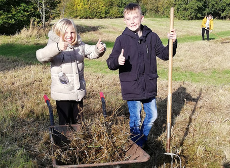 Thames View Primary Students use their exceptional team-working skills to support local Country Park