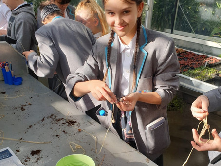 Volunteering at Wisley Gardens Raises Confidence for Langley Academy Students on Rising Futures