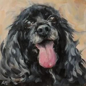 portfolio animals-7.webp