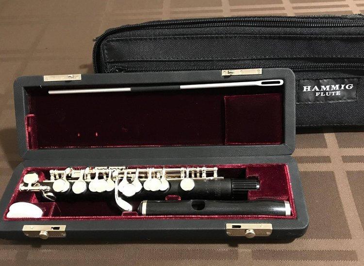 Philipp Hammig Piccolo Model 650/4