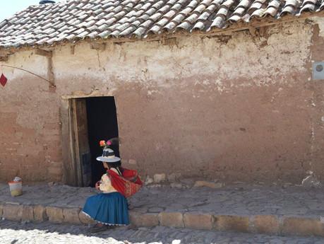 Pueblos indígenas de Bolivia expuestos a una gran amenaza por el COVID-19