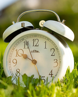 White clock in grass.jpg