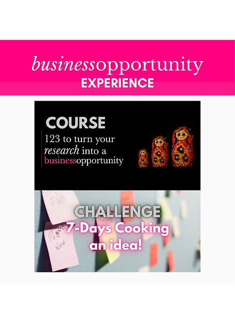 Business Opportunity Bundle