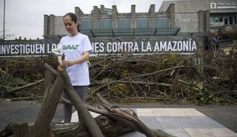 El costo de proteger la naturaleza: 227 defensores ambientales asesinados en 2020
