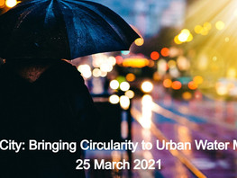 Join in on the event! Water in the City: Bringing Circularity to Urban Water Management